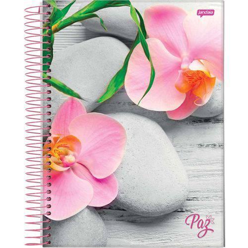 Caderno capa dura universitário 400 folhas PAZ 42475 Jandaia unid.