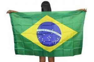 BANDEIRA DO BRASIL TECIDO 65 X 95CM C/ HASTE CP402 COLLOR FEST UND